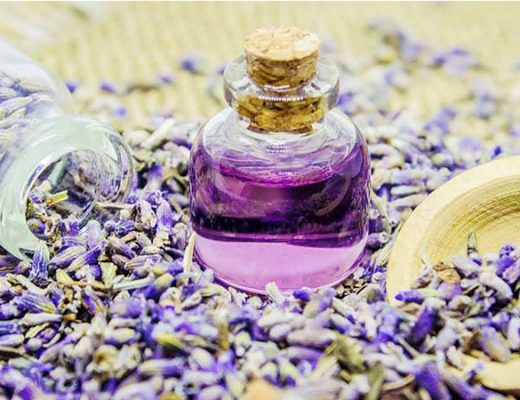 Top 4 Benefits of Lavender Essential Oils that You Need to Know